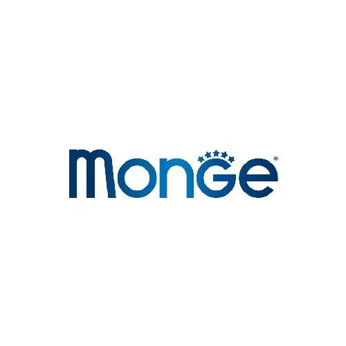 Monge Logo Brands and Marks